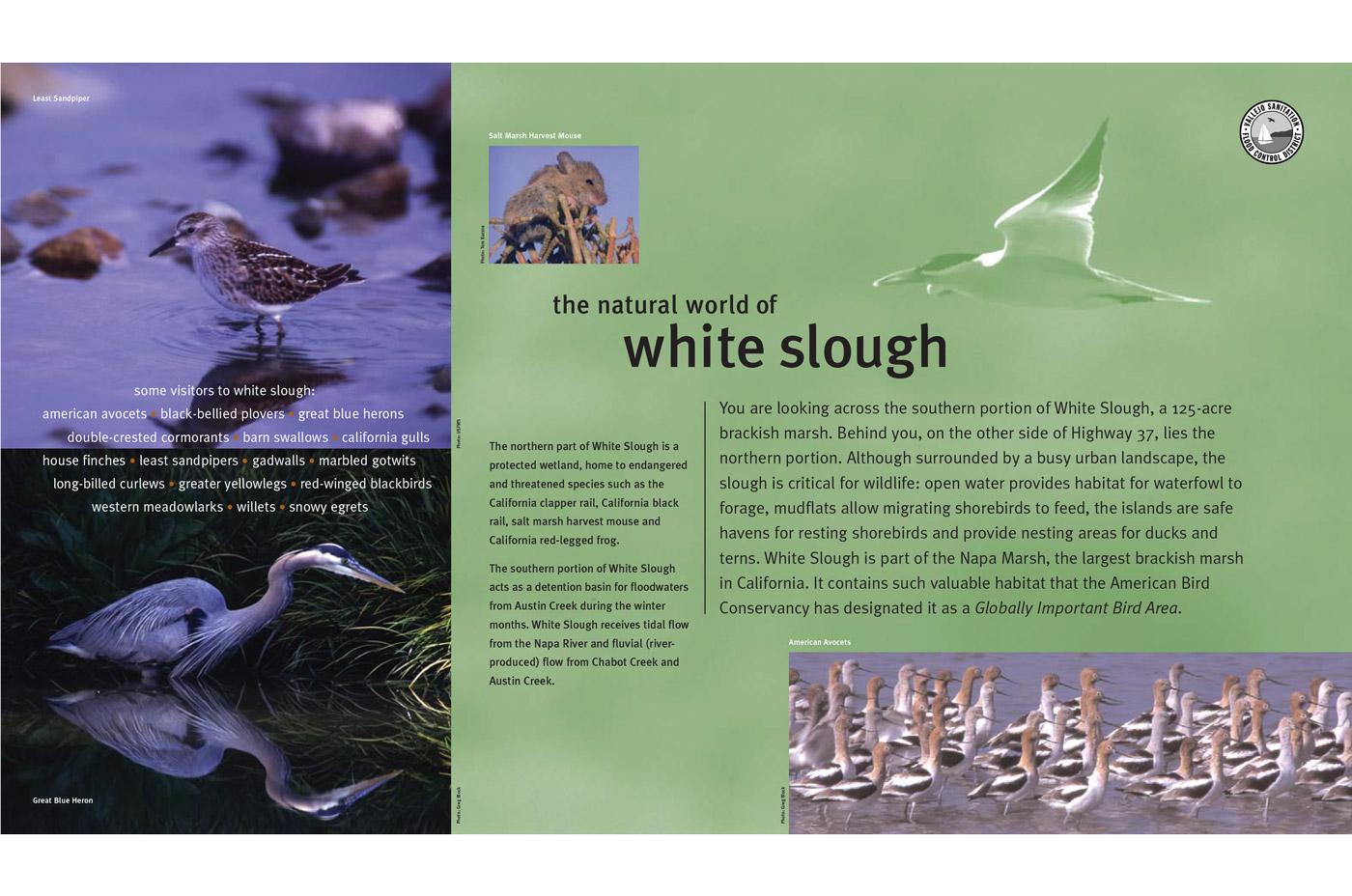 White Slough Interpretive Graphics